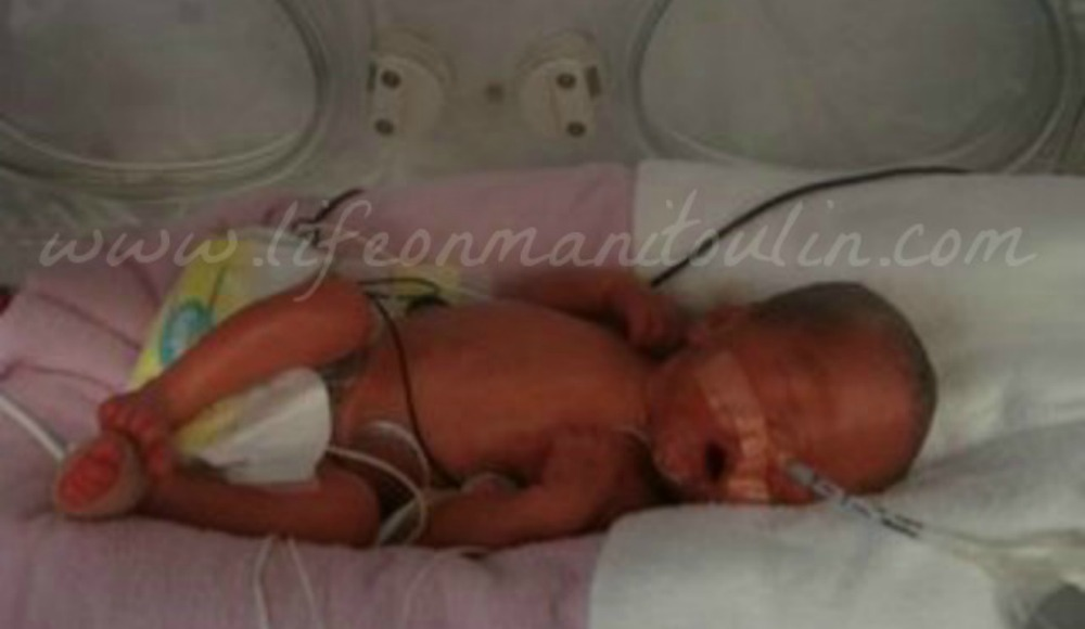 pampers preemie