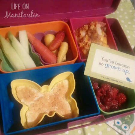 Lunchbox Love Lunch 1