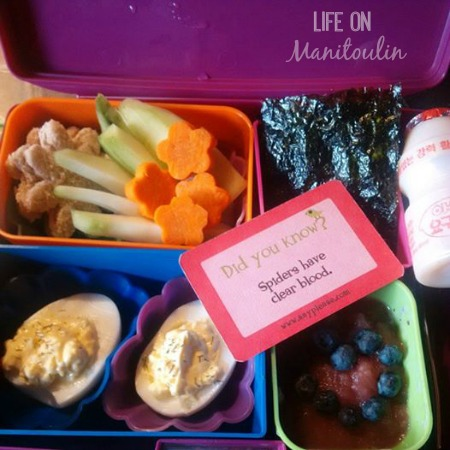 Lunchbox Love Lunch 2
