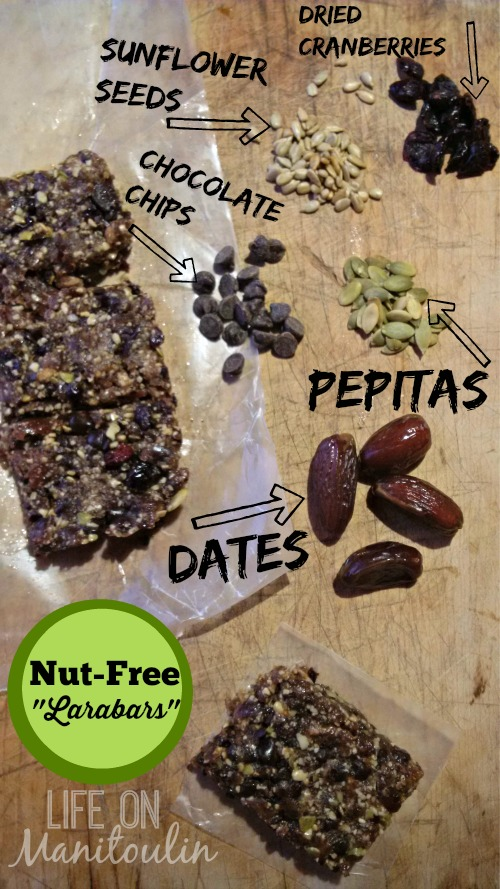 Nut Free Larabars