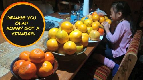 vitamix oranges