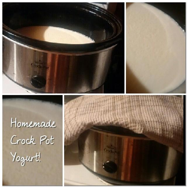 homemade crockpot yogurt