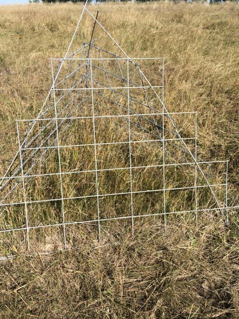 range cage