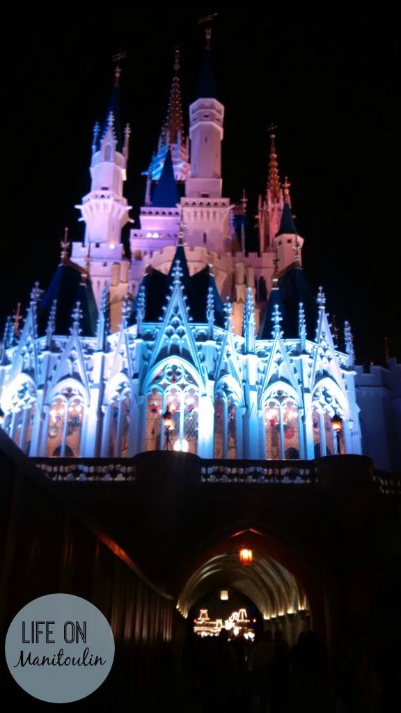 Disney World at night