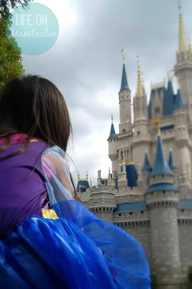 Fairytales Come True - Disney 2015