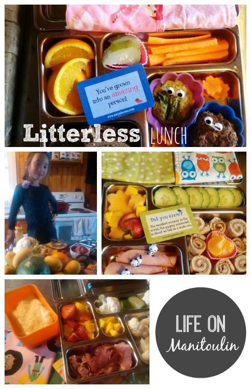 LitterLessLunch Collage