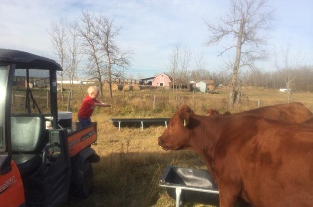 Farm Mom 1