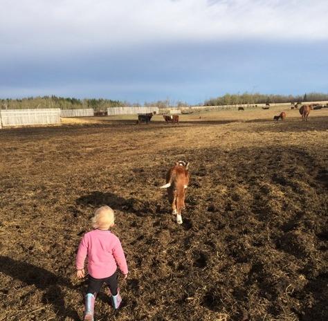 Farm Mom 2