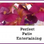 7 Tips for Perfect Patio Entertaining