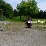Canadian Tire encourages families to get out and play #WannaPlayChat