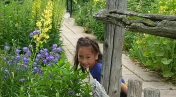 childhood garden