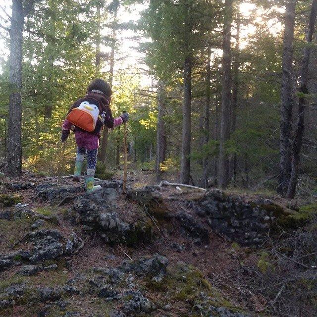 little hiker