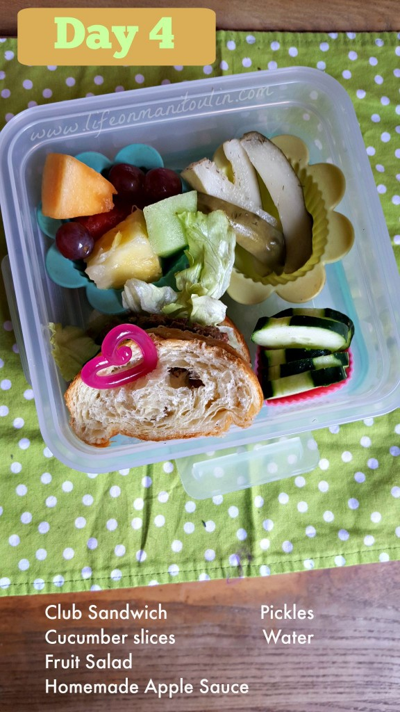 Bento Box Lunch 4