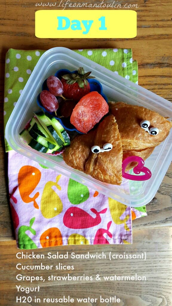 bento box lunch 1