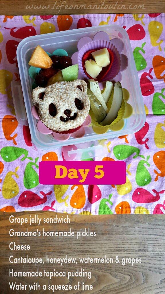 bento box lunch 5