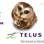 8 Online Safety Tips For Your Family – TELUS WISE