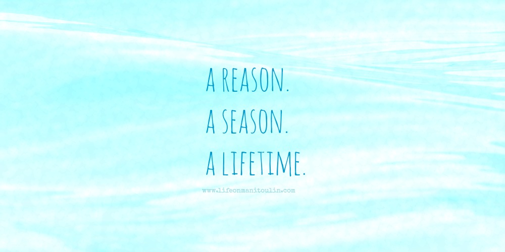 reason season lifetime