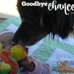 Broken-Hearted: Goodbye Chance