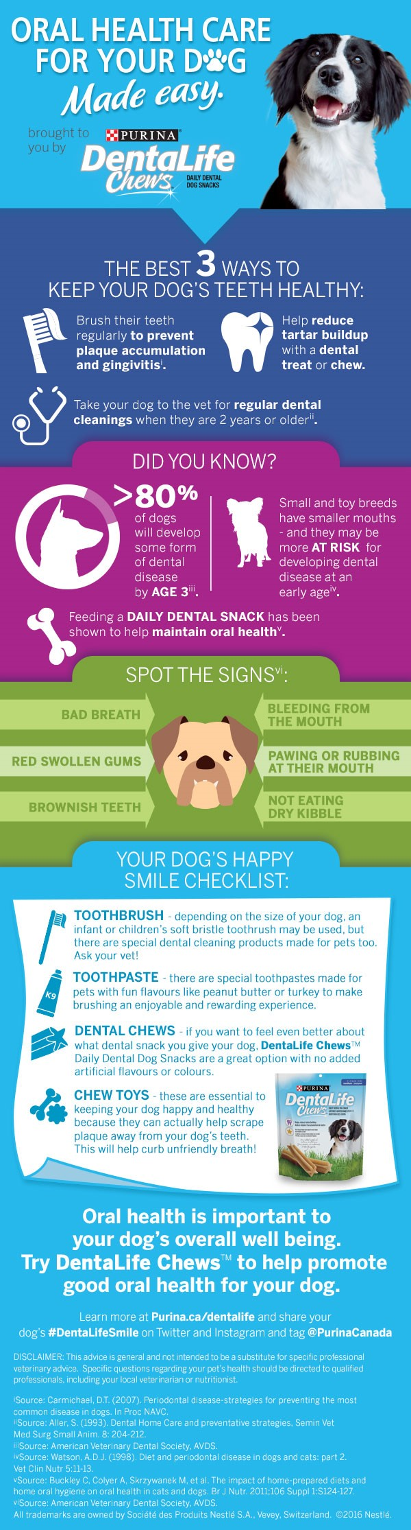 Dentalife Infographic
