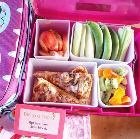 kids lunch 5
