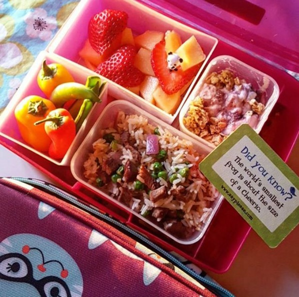 kids lunch 9