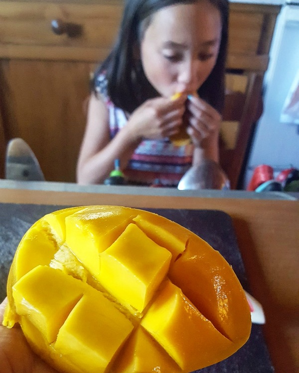 How to cut a mango 2