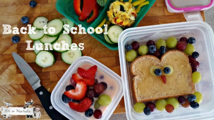 Back to School Lunches with Snapware