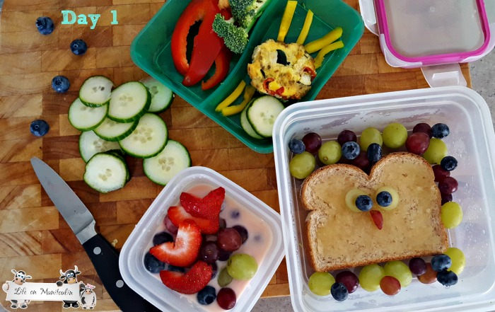 back to school lunches 1