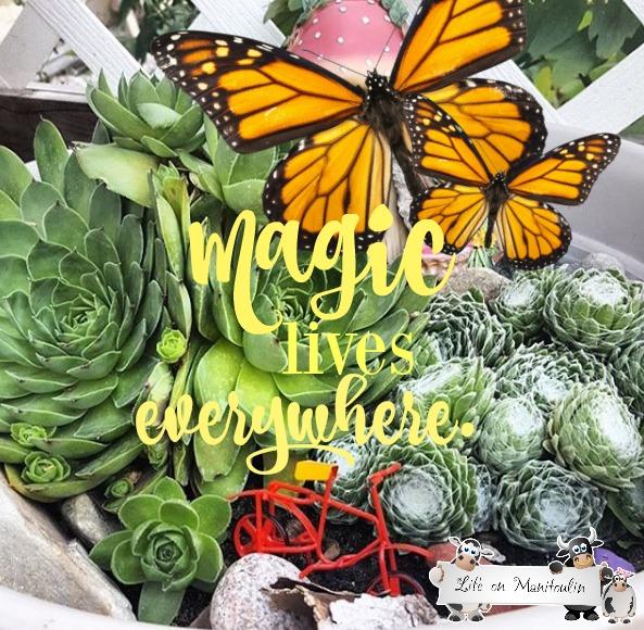 magic-lives-everywhere