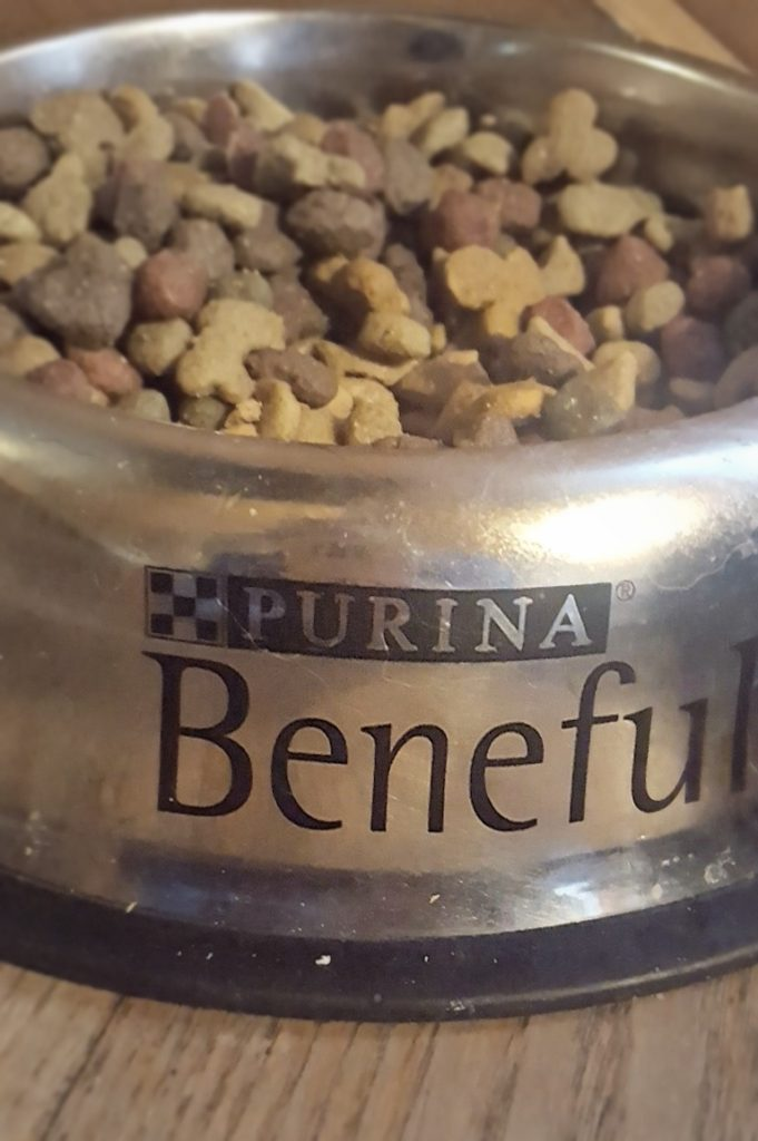purina-beneful-mealtime-routine