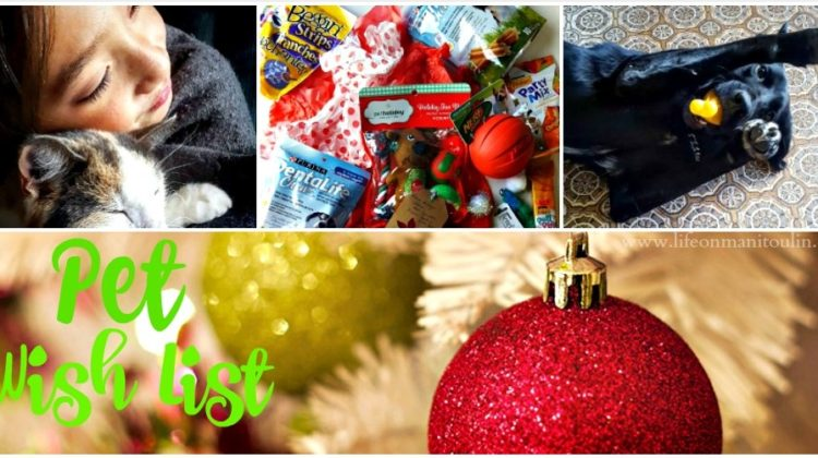Yes, Our Pets Have a Pet Wish List Too!