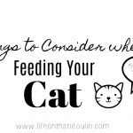 Things to Consider When Feeding Your Cat  #LetsLiveBig #PurinaPetPeople