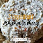 Three-Ingredient Homemade Cheese Recipe