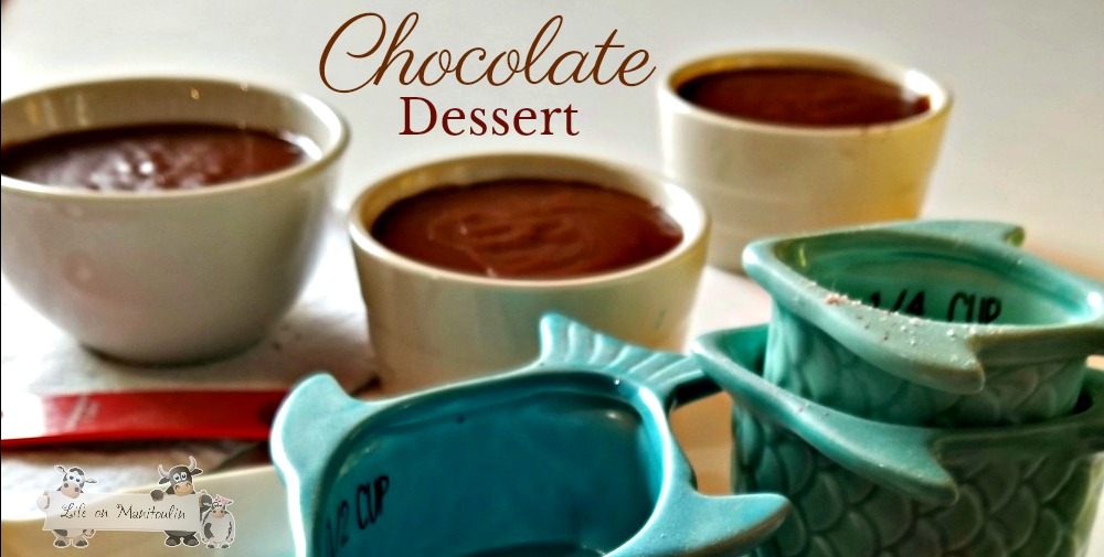 The Easiest Chocolate Dessert You Will Ever Make